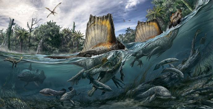 зуб динозавра CПИНОЗАВРА(Spinosaurus aegyptiacus)  подарок парню, мужчине,палеонтологу  новый год, день рождения 23 февраля