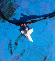 Амулет с зубом Синей акулы к