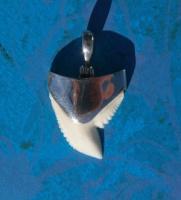 Кулон с зубом Тигровой акулы ш