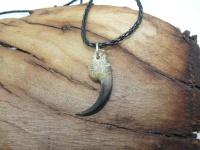 Кулон-амулет-оберег коготь орла длина 4 см