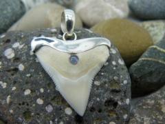 Кулон-подвеска зуб бычьей акулы с настоящим голубым опалом в 1 карат